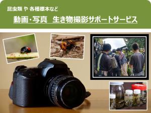 生き物撮影サポートサービス