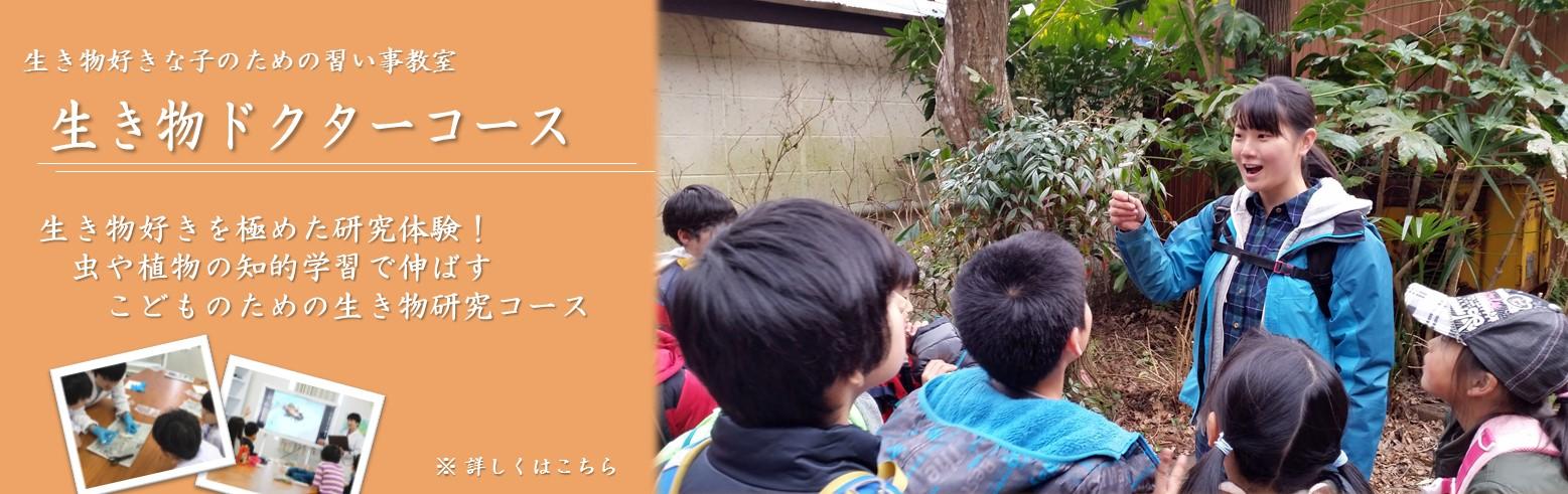 自然・生きもの観察学習教室